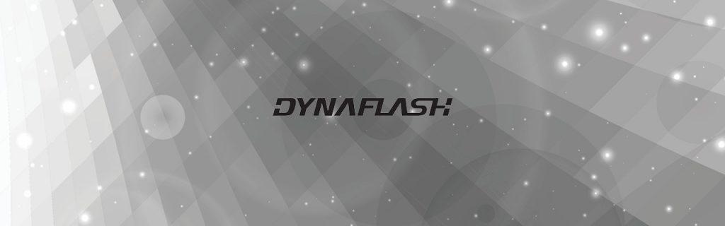 Logo DynaFlash